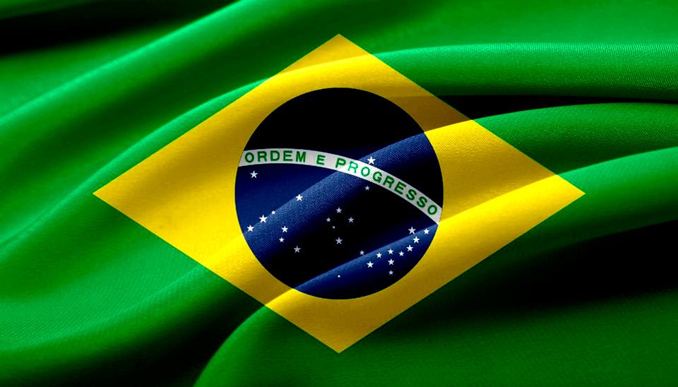A Profissão de Professor de Português para Estrangeiros no Brasil